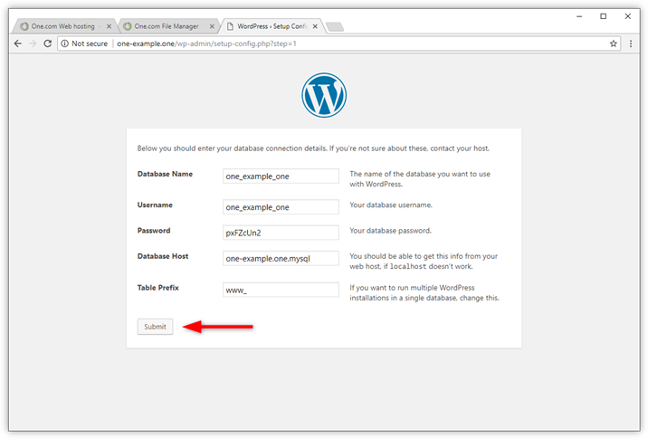 wp-manual-database-enter-details.png