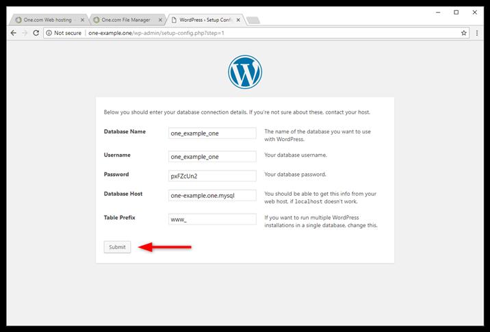 wp-manual-database-enter-details.png